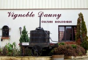 Vignoble Dauny